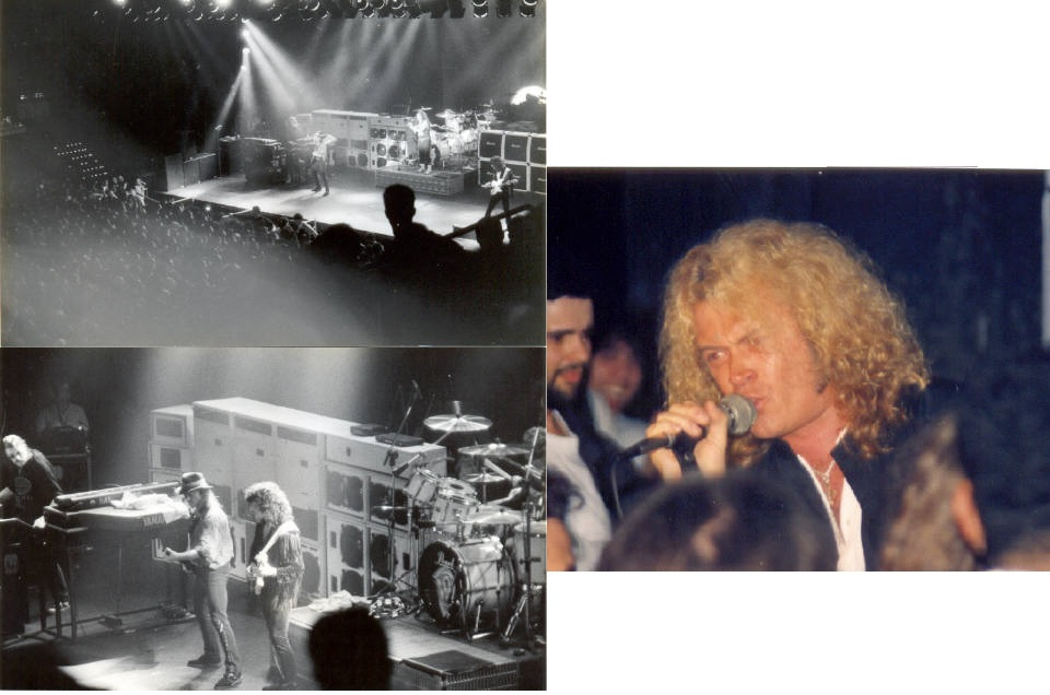 deep purple 91
